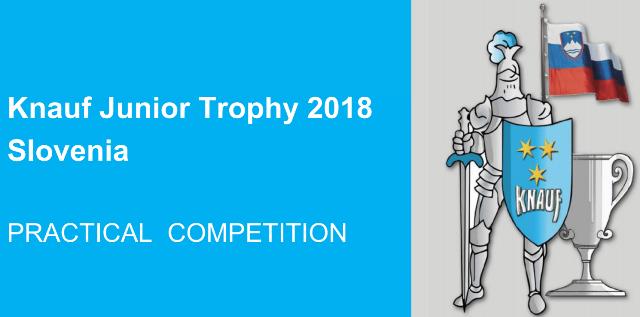2018-06-04 Išvyko į tarptautinį profesinio meistriškumo konkursą